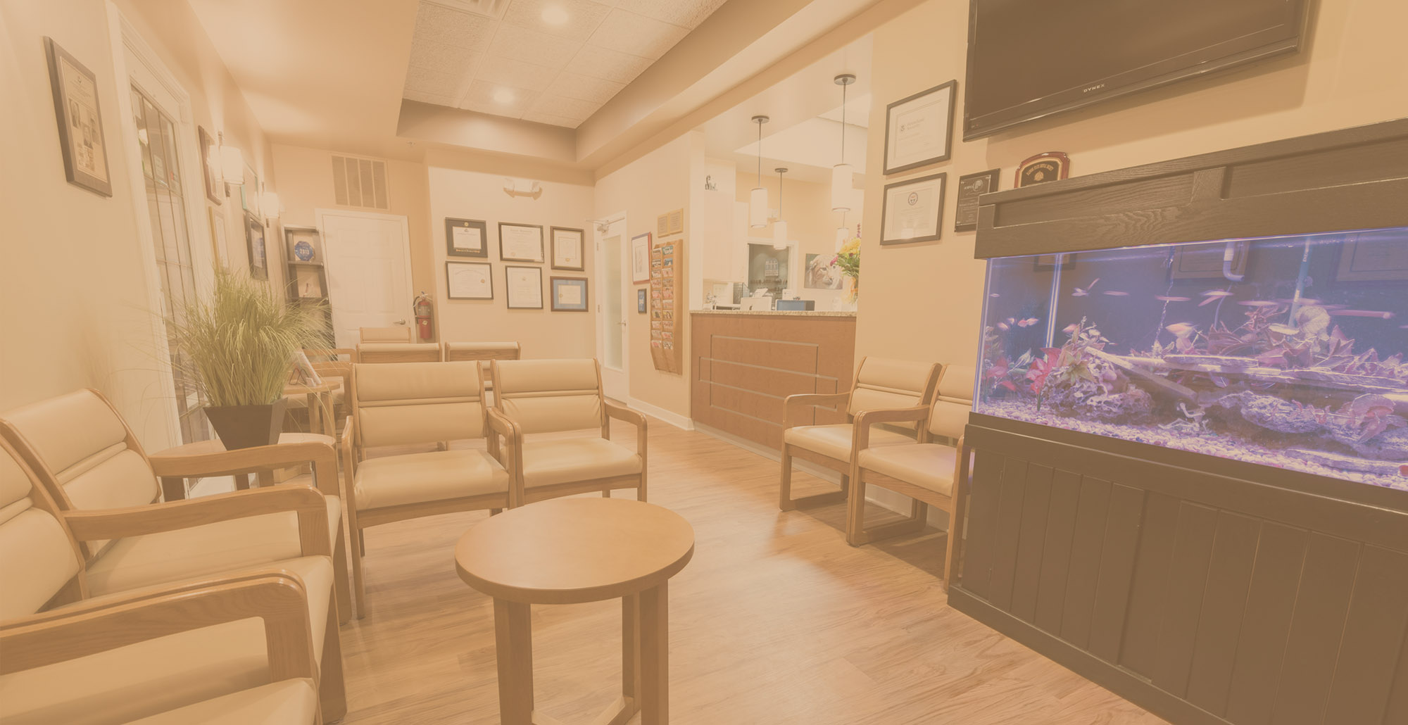 Gurnee Dental Office